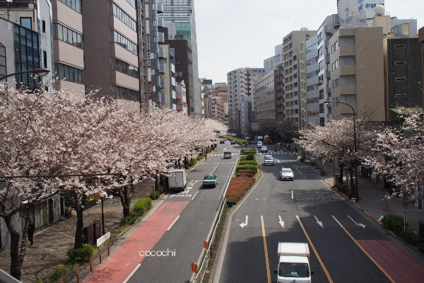 20140408_春の散歩01